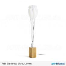 Tulip Stehlampe Objekt in Eiche Domus